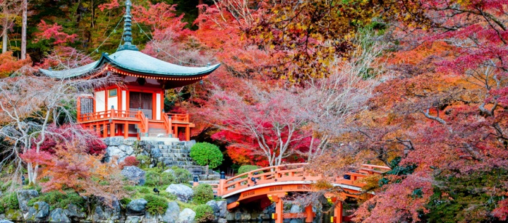 GÜNEY KORE VE JAPONYA TURU